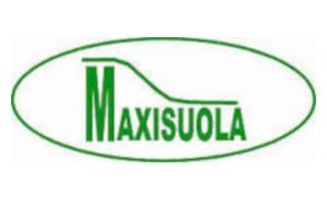 maxisuola_ridimensionata